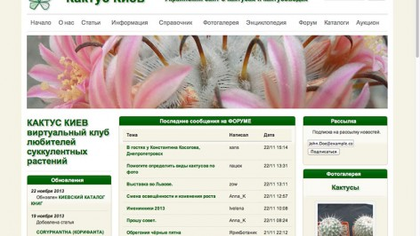 cactus 472x266 cactus